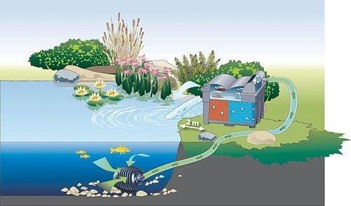 Der Teichfilter leitet das gesäuberte Wasser wieder zurück in den Teich
