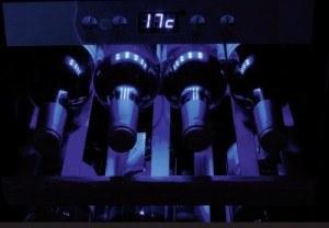 CASO Germany WineMaster 66 LED