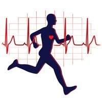 Der Crosstrainer von Life Fitness hat ein Herz-Kreislauf Programm.