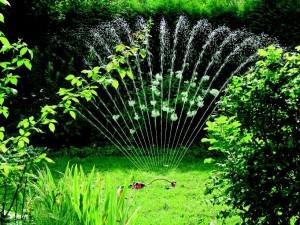 Hauswasserwerk Gartenbewässerung