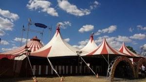 Im Zirkus ist das Trampolin nicht mehr weg zu denken.