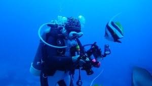 Taucher mit Kamera und Fisch im Meer