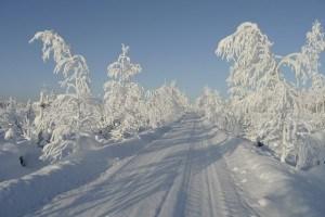 Schneeketten sind auf winterlichen Straßen unabdingbar