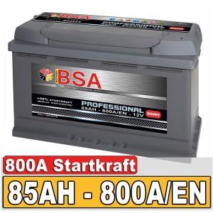 BSA Professional Autobatterie