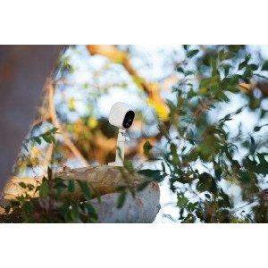Eine Überwachungskamera kann an unterschiedlichen Orten eingesetzt werden, zum Beispiel auf einem Baum