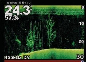 fischen-15