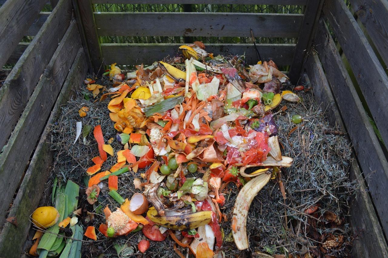Worauf muss ich beim Kauf eines Komposters achten?