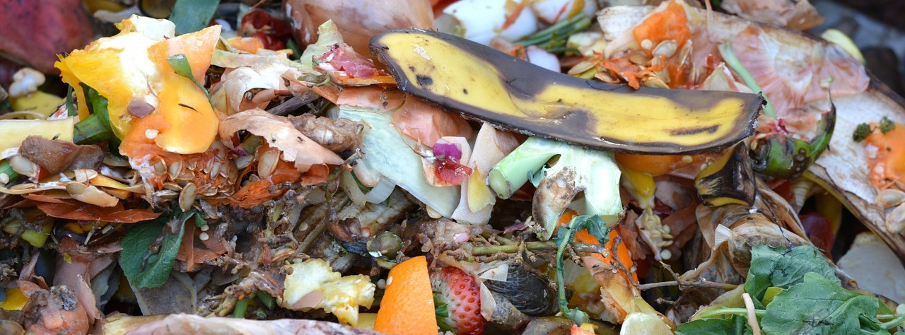 Vorteile & Anwendungsbereiche von Kompostern