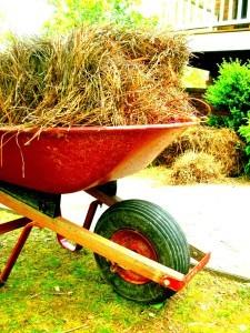 Transport von Stroh