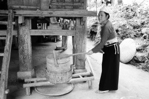 Vietnam Reis