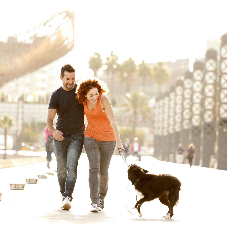 Zwei Verliebte in Aktivität mit Hund