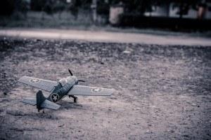 Model War Bird