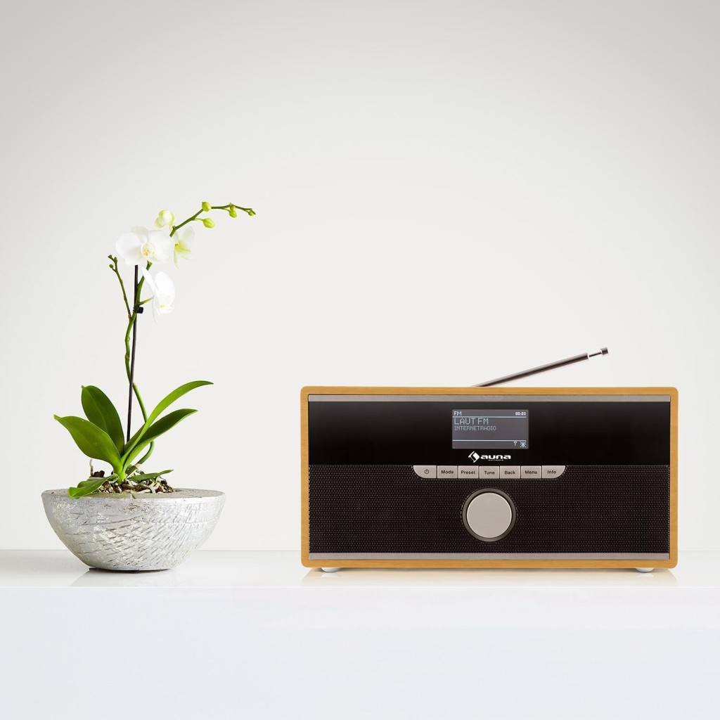Welche Arten von Internetradios gibt es?
