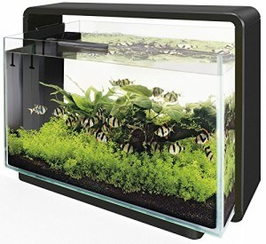 Superfish aquarium 60 liter