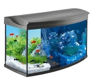 Das neue Aquarium im Internet oder doch lieber im Fachhandel kaufen.