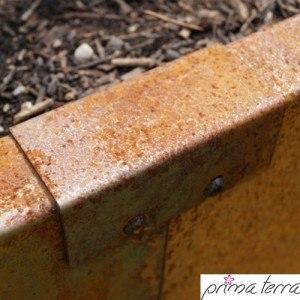 Verbinder-Prima-Terra-Beet