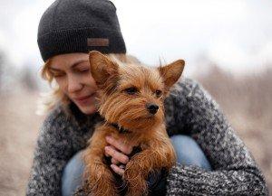 Erhalten Sie in unserem Ratgeber nützliche Tipps zur Hundeerziehung.