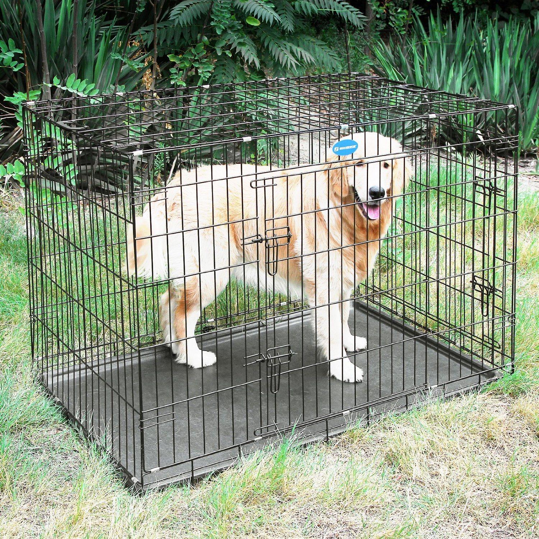 Welche Arten von Hundeboxen gibt es?