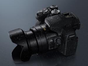 Panasonic LUMIX DMC-FZ300EGK Premium-Bridgekamera