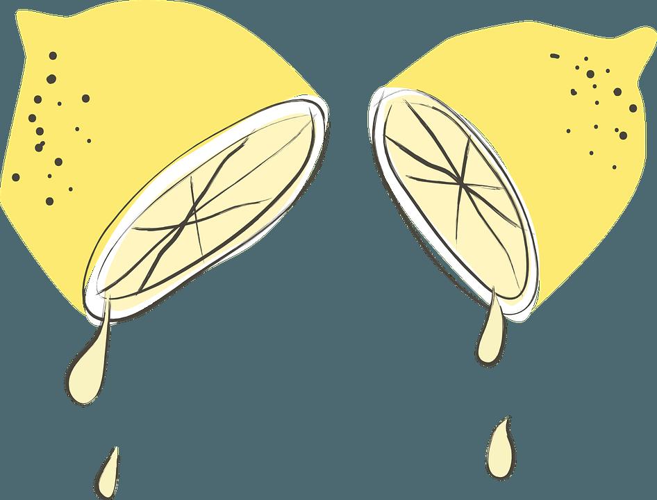 Lemons 511479