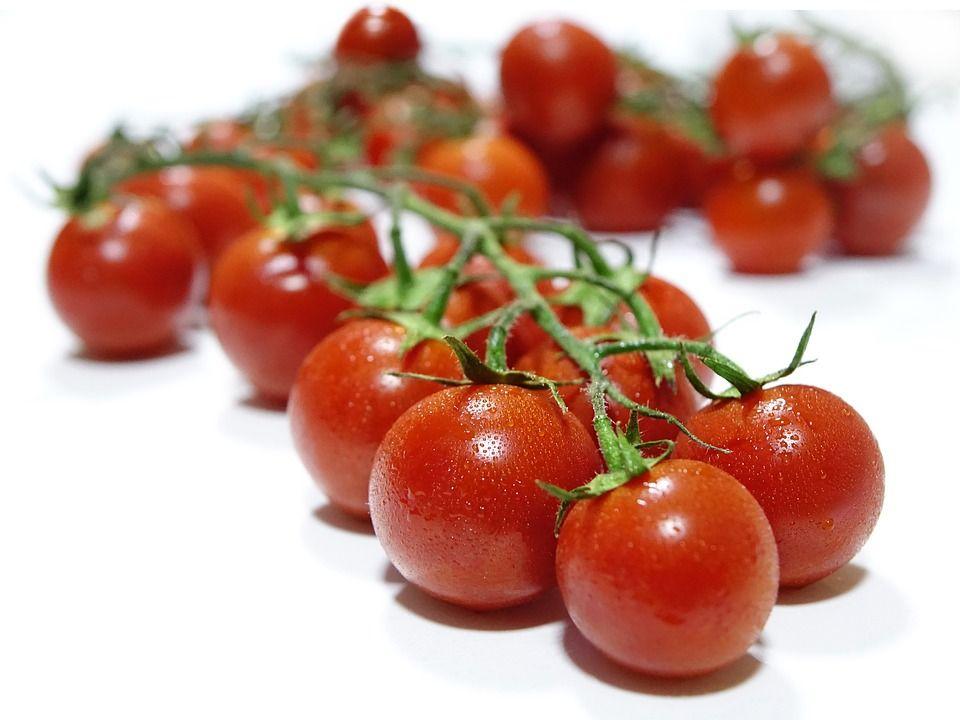 Tomatoes 1540836