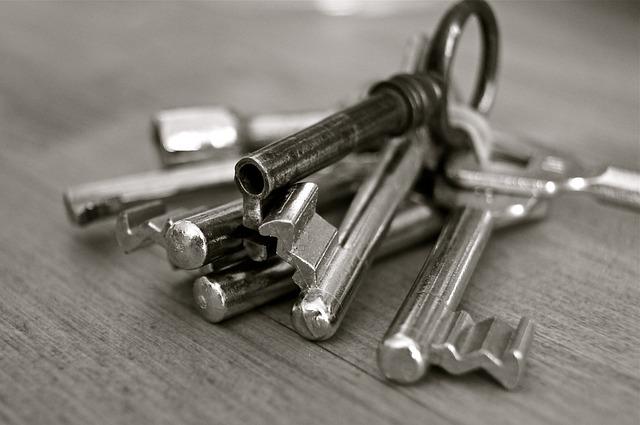 Key 96233