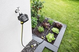 Wie waren die Anfänge der Gartenbewässerung?