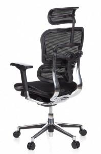 02-HJH-Office-Ergohuman-652111
