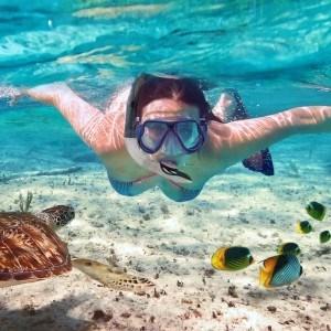 Innovatives Premium Schnorchelset Snorkel Star von Sportastisch