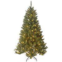 Black Box Trees 1002217-02