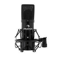 Auna Mikrofon  im Test
