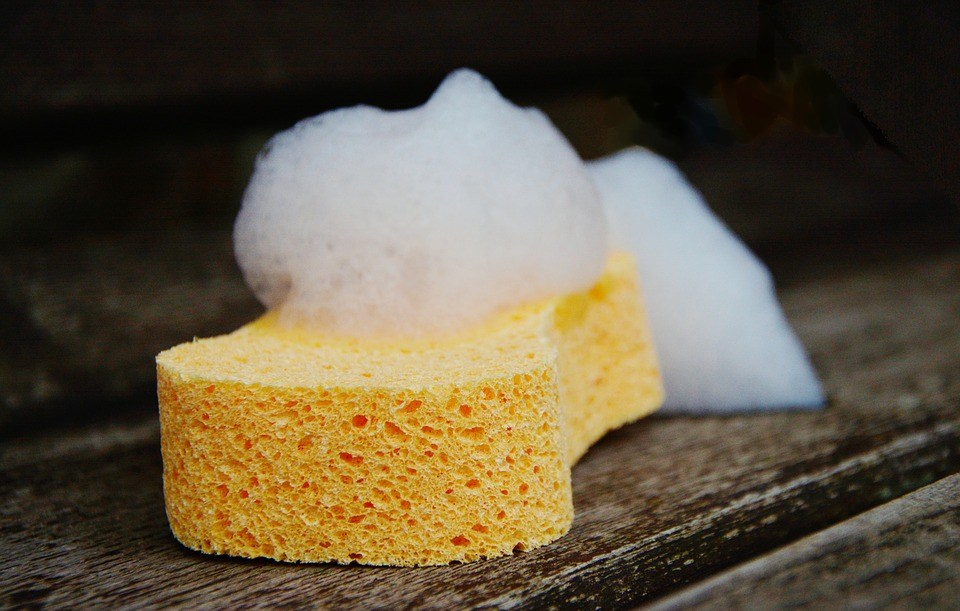 sponge-1976828_960_720