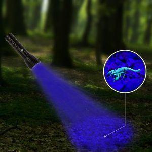 07-UV-Taschenlampe-Schwarzlicht-betrieb