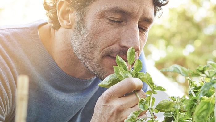 Produkte aus der Kategorie Garten im Test auf ExpertenTesten