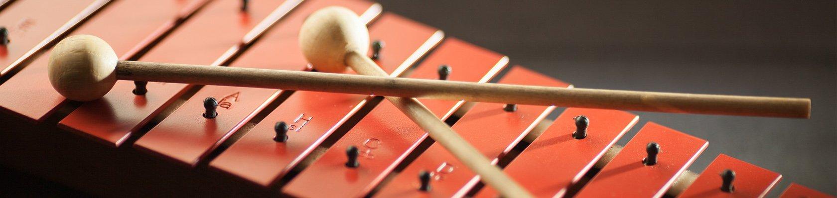 Xylophone im Test auf ExpertenTesten.de