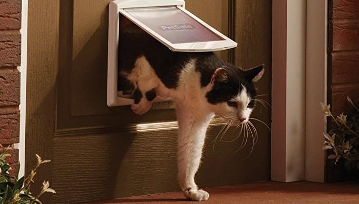 Katzenklappen im Test auf ExpertenTesten.de