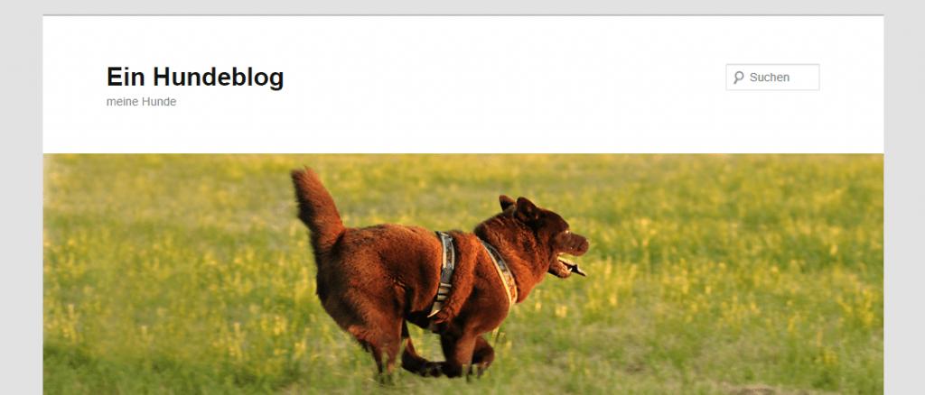 Vorstellung Hundeblog schbazl.de