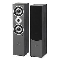AEG LB 4711 Stand Lautsprecher (500 Watt) schwarz (Paar)