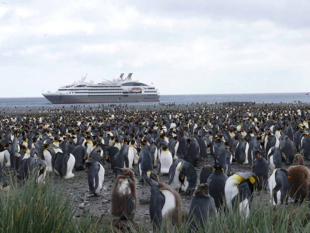 Antarctica 337591