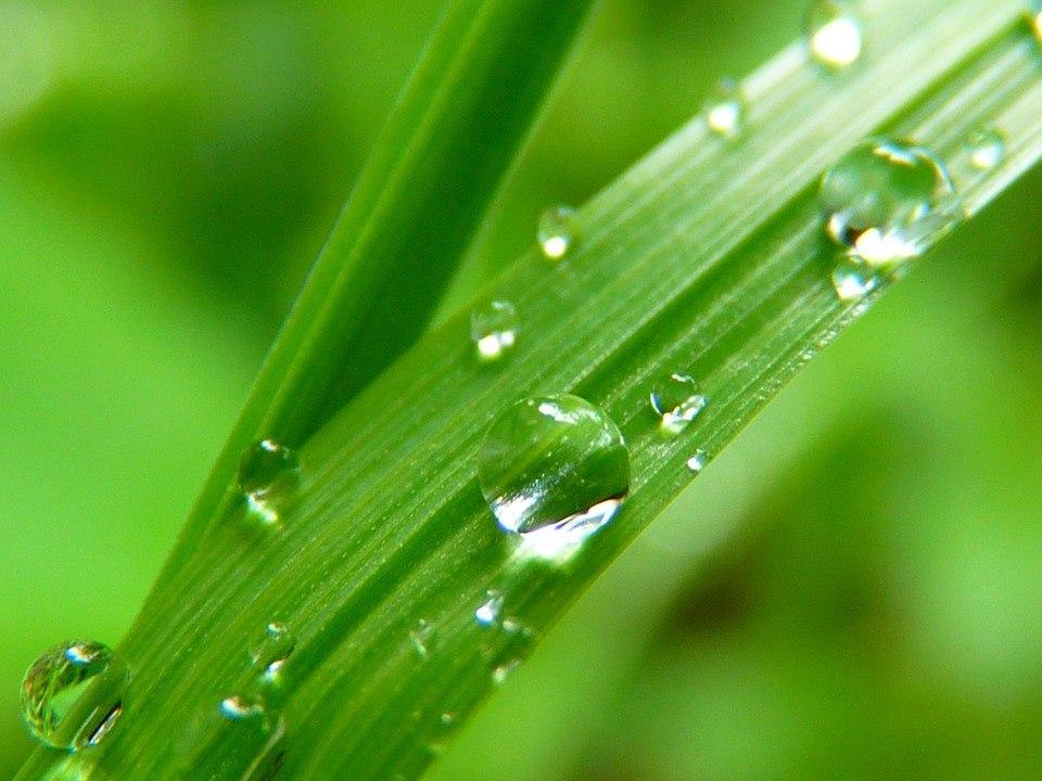 Drop Of Water 7720 1