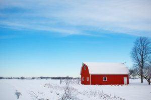Winter Barn 556696
