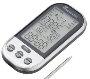 Reinigung und Pflege eines Grillthermometers