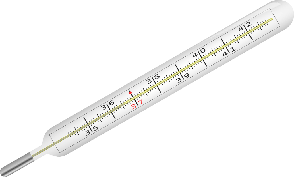 Clinical Thermometer 153666 1280