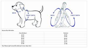 Blueberry Pet Step-In Geschirr
