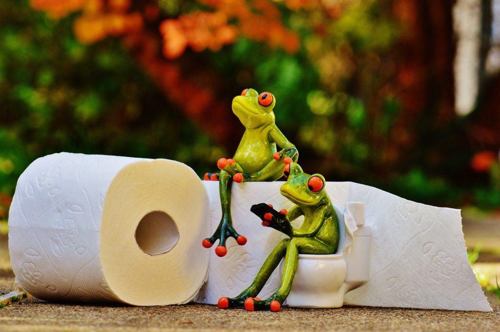 Frog 1037714