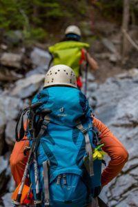 Climbing 2446337