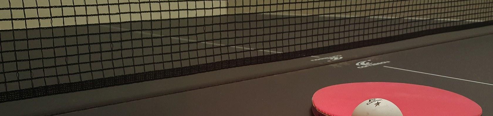 Tischtennisplatten im Test auf ExpertenTesten.de