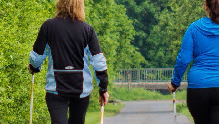 headerbild_Nordic-Walking-Stock-test