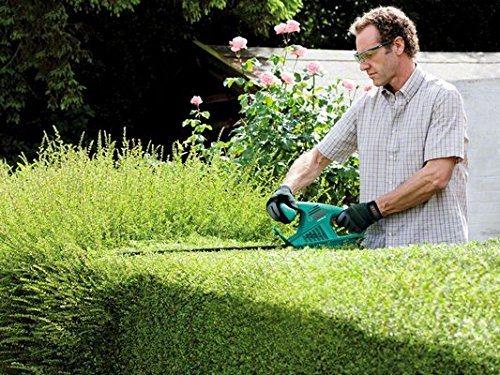 Mann mit einer Elektro-Heckenschere von Bosch bei der Gartenarbeit