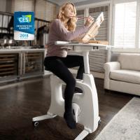 Flexispot V9 Höhenverstellbares Tischfahrrad